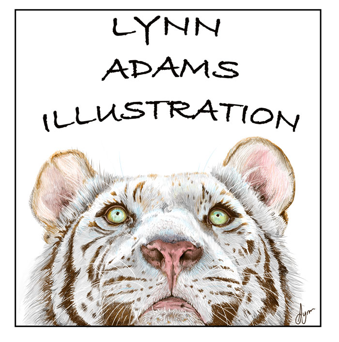 greeting cards by Lynn Adams Illustration