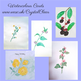 greeting cards by CrystalClear