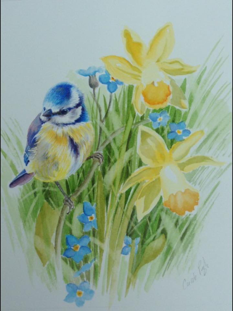 greeting cards by Wildart
