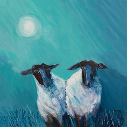 Sheep in the moonlight