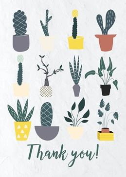Thank You Floral Cacti