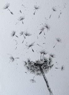 Seed head , blowing in the wind