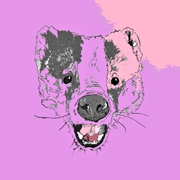Abstract badger