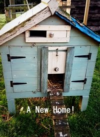 A New Home!