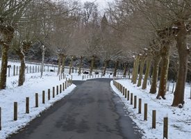 Approach to Quarr