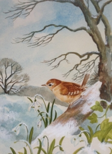 Snowdrops and wren
