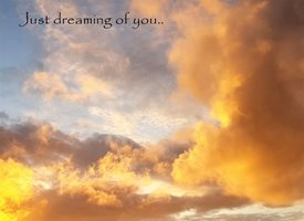 Dreaming..
