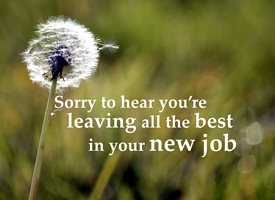 Sorry you'r leaving