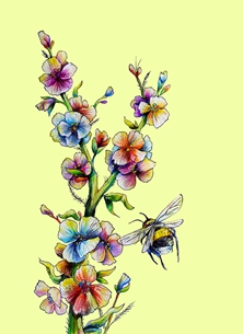 Traditional flowers and bee
