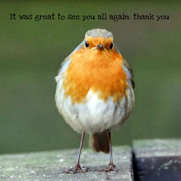 Gary Green Eyes Staring Robin Thank you  personalised online greeting card