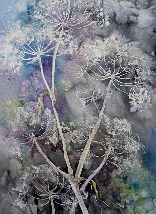 Art by Sheila O'Brien Cow Parsley  personalised online greeting card