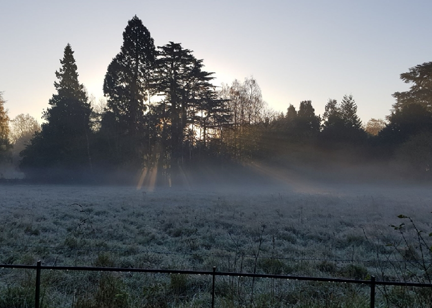 Deezal Photography Misty Fields  personalised online greeting card