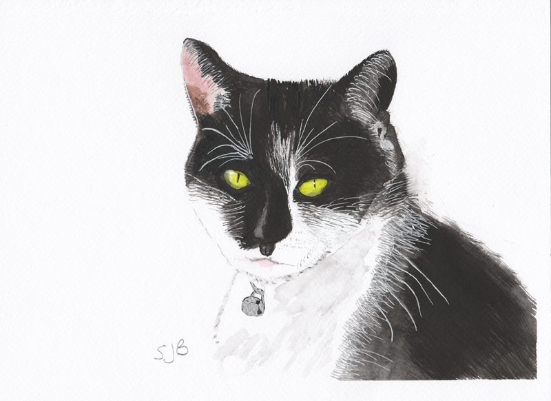 SJB Cards Tuxedo Cat  personalised online greeting card