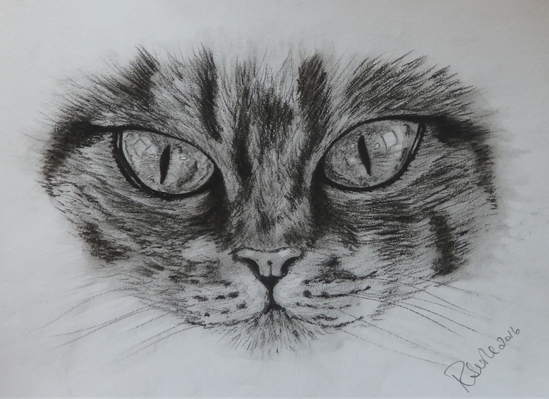 Ruth Searle Art & Photography Cat's Eyes  personalised online greeting card