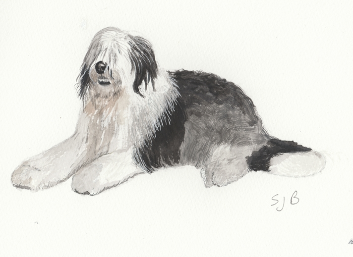SJB Cards Old English Sheepdog  personalised online greeting card