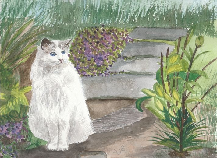 SJB Cards White Cat in the Garden  personalised online greeting card