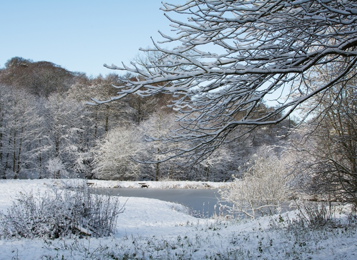 Chappers Photography Winter by the Lake  personalised online greeting card