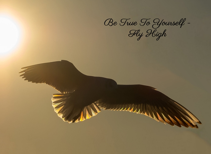 Kate Jaconello Fly High  personalised online greeting card