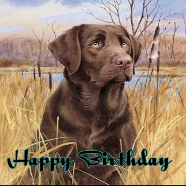 Animal welfare auctions Happy Birthday   personalised online greeting card