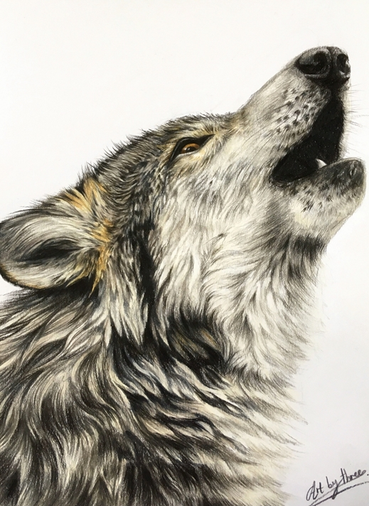 Art By Three  Howling Wolf  personalised online greeting card