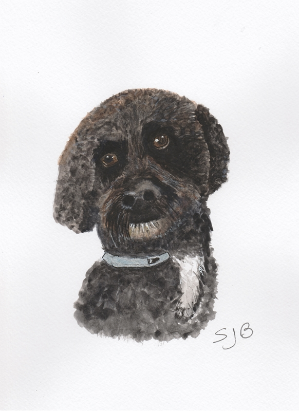 SJB Cards Baxter  personalised online greeting card
