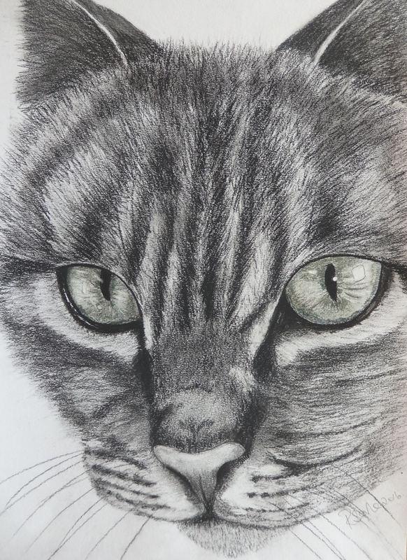 Ruth Searle Art & Photography Cat  personalised online greeting card