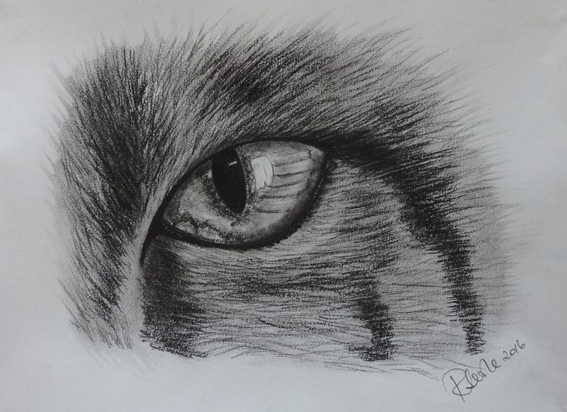 Ruth Searle Art & Photography Cat's eye  personalised online greeting card