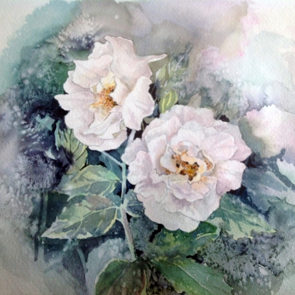 Art by Sheila O'Brien White rose  personalised online greeting card