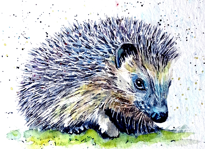EmilyJane Hedgehog  personalised online greeting card