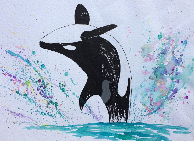 Ruth Searle Art & Photography Orca  personalised online greeting card