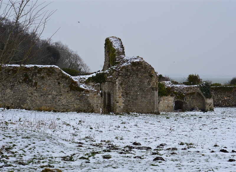 Wight Life Images Quarr ruins 1  personalised online greeting card