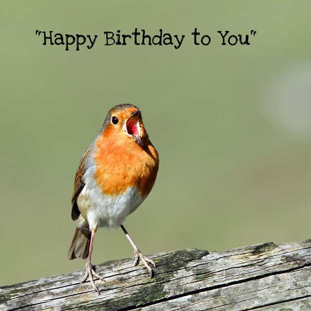 Gary Green Eyes Singing Robin Happy Birthday to You  personalised online greeting card
