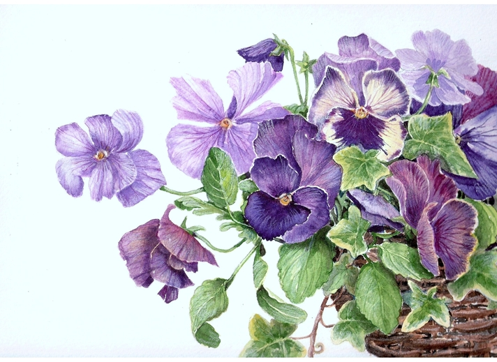 Art by Sheila O'Brien Pansy basket  personalised online greeting card