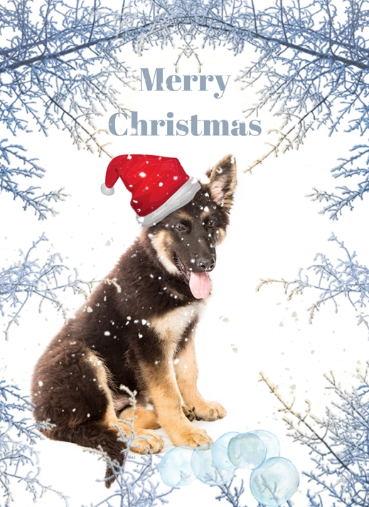 Her Nibs  Christmas Puppy   personalised online greeting card