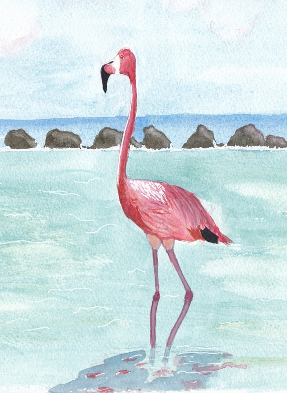 SJB Cards Flamingo  personalised online greeting card