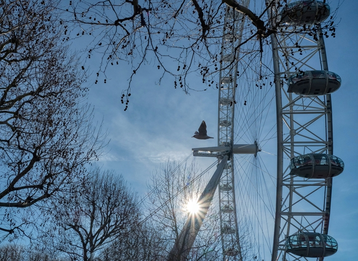 Kate Jaconello The London Eye  personalised online greeting card