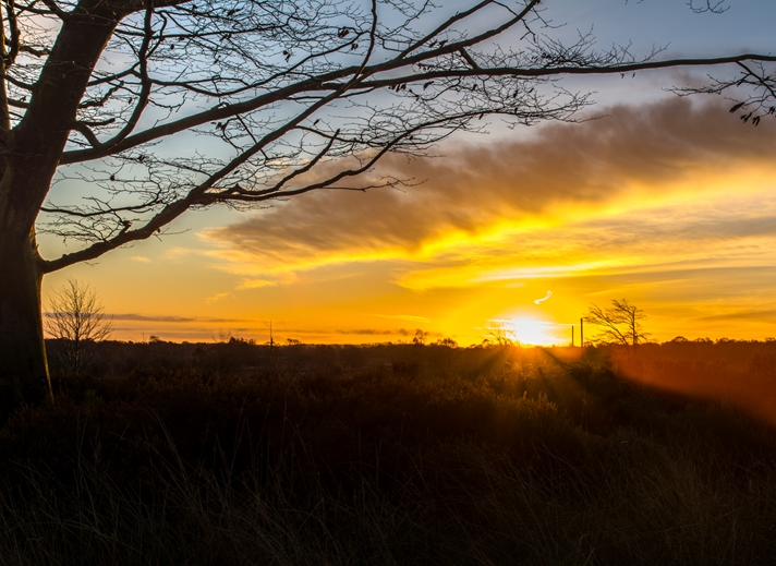Chappers Photography Sunrise over Cannock Chase  personalised online greeting card