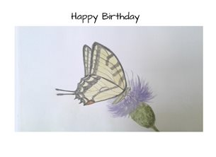 birthday butterflies swallowtail thistle watercolour personalised online greeting card