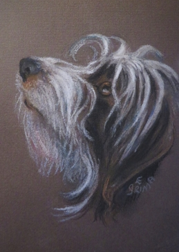 Art mans best friend, hairy dog, friend, for-him, for-her, for-children personalised online greeting card