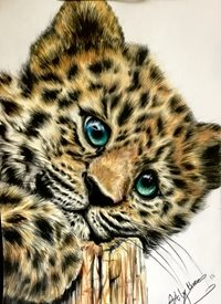 Art By Three  Jaguar Cub Art Jaguars cubs cats wildlife cute babies animals fluffy blue eyes furry safari zoos kids her mums dads all occasions for-him for-her for-child personalised online greeting card