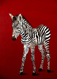 art Zebra, Animals, Wildlife, Africa, Zoo, Red, Black, White, Painting,  personalised online greeting card