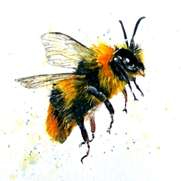Art general bee wildlife black yellow white for-him for-her personalised online greeting card
