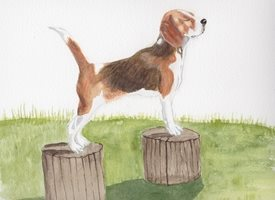 Art Beagle posing on long pedigree dogs animals personalised online greeting card
