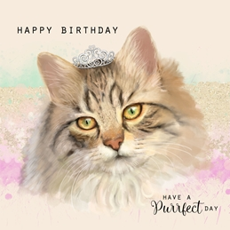 birthday cats personalised online greeting card