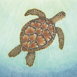 art general sea turtle, turtle, birthday, for him, for her, mothers day, sorry, sympathy personalised online greeting card