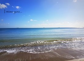 Photography distance  sea beach miss z%a personalised online greeting card