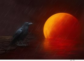 General moon, crow,bird personalised online greeting card