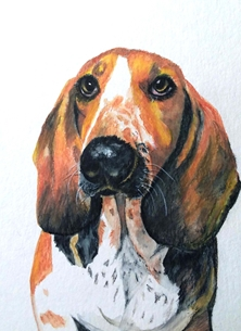 art basset hound, artwork dogs animals pets for-him for-her personalised online greeting card