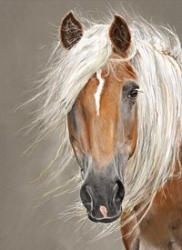 Art general horse haflinger pony palomino  personalised online greeting card