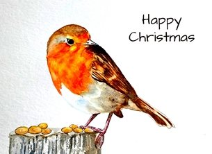 Christmas artwork robin birds wildlife for-him for-her personalised online greeting card